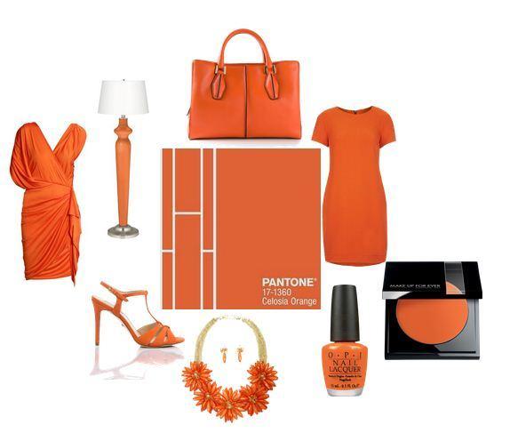 celosia-orange